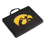 Iowa Seat Cushion w/ Hawkeyes logo