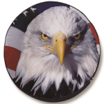 Bald Eagle Head With Flag Tire Cover - Black Vinyl