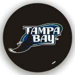 Tampa Bay Tire Cover with Rays Logo on Black - Standard