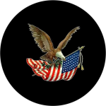 Eagle Flag Tire Cover on Black Vinyl