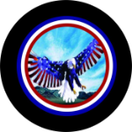 Flying Eagle Flag Spare Tire Cover on Black Vinyl