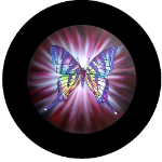 Purple Butterfly Tire Cover on Black Vinyl