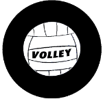 Volley Ball Tire Cover on Black Vinyl