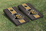 Central Florida Cornhole Boards w/ Golden Knighs Logo