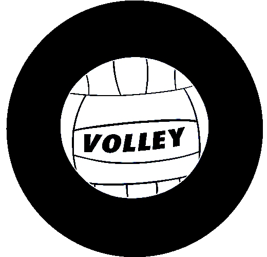 Volley Ball Tire Cover on Black Vinyl : VolleyBall from www.teamsportscovers.com size 520 x 500 jpeg 76kB