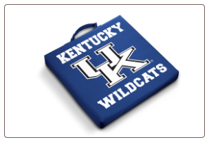 Kentucky Wildcats Team Logo Stadium Cushion